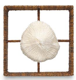 Mushroom Coral Shadow Box