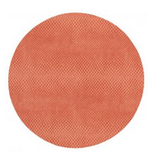 Coral Snakeskin Placemat