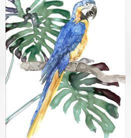 Perched Parrot 1