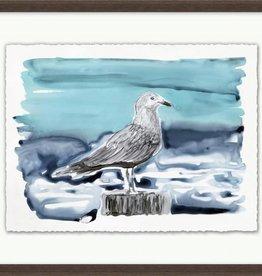 Lowcountry Gulls 2