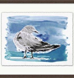Lowcountry Gulls 3