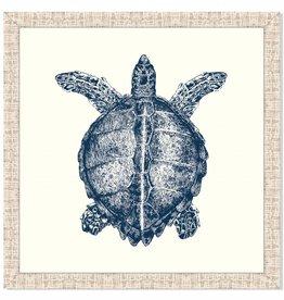 Turtle in Blue