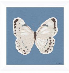 White Monarch on Blue