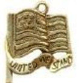 1 PC AGP 20x18mm United We Stand Flag Charm