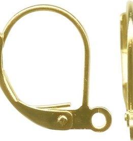 12 PC GP 14x11mm Plain Leverback Ear Wire