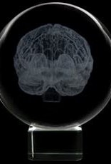 Crystal Sphere - Brain