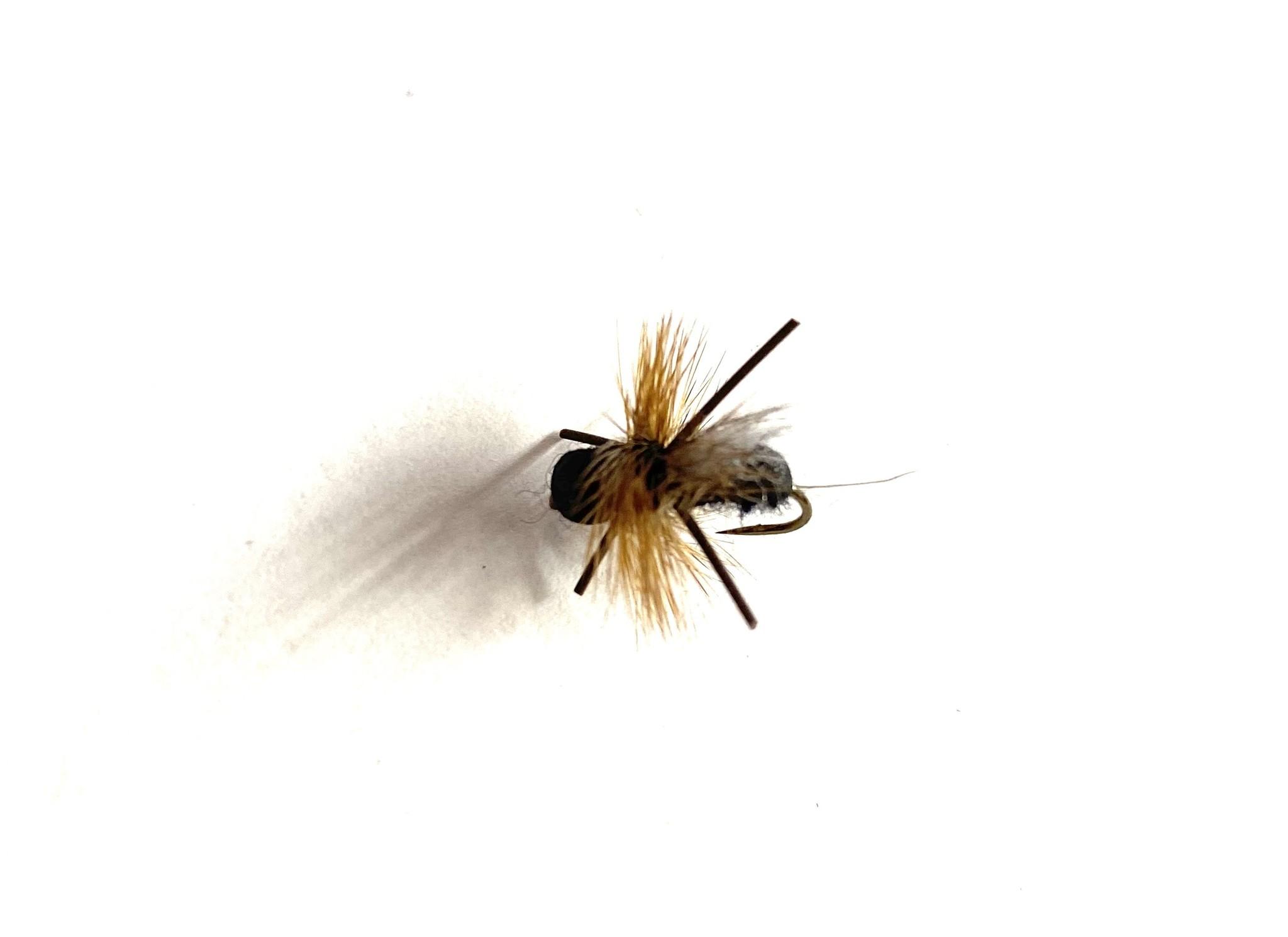 Fulling Mill CFO Ant