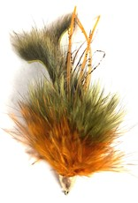 Shultzy's Low Water Crayfish