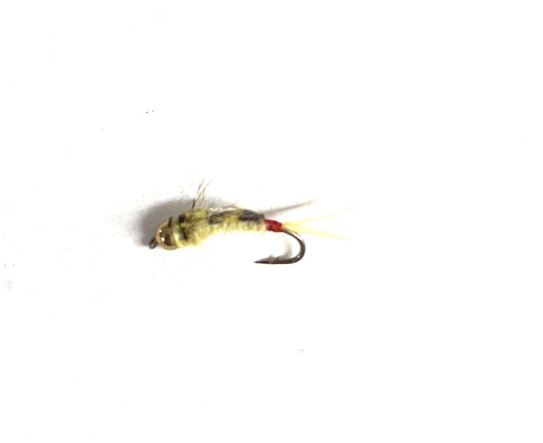 Montana Fly Company Silverman's BH Epoxyback Red Tag Sally
