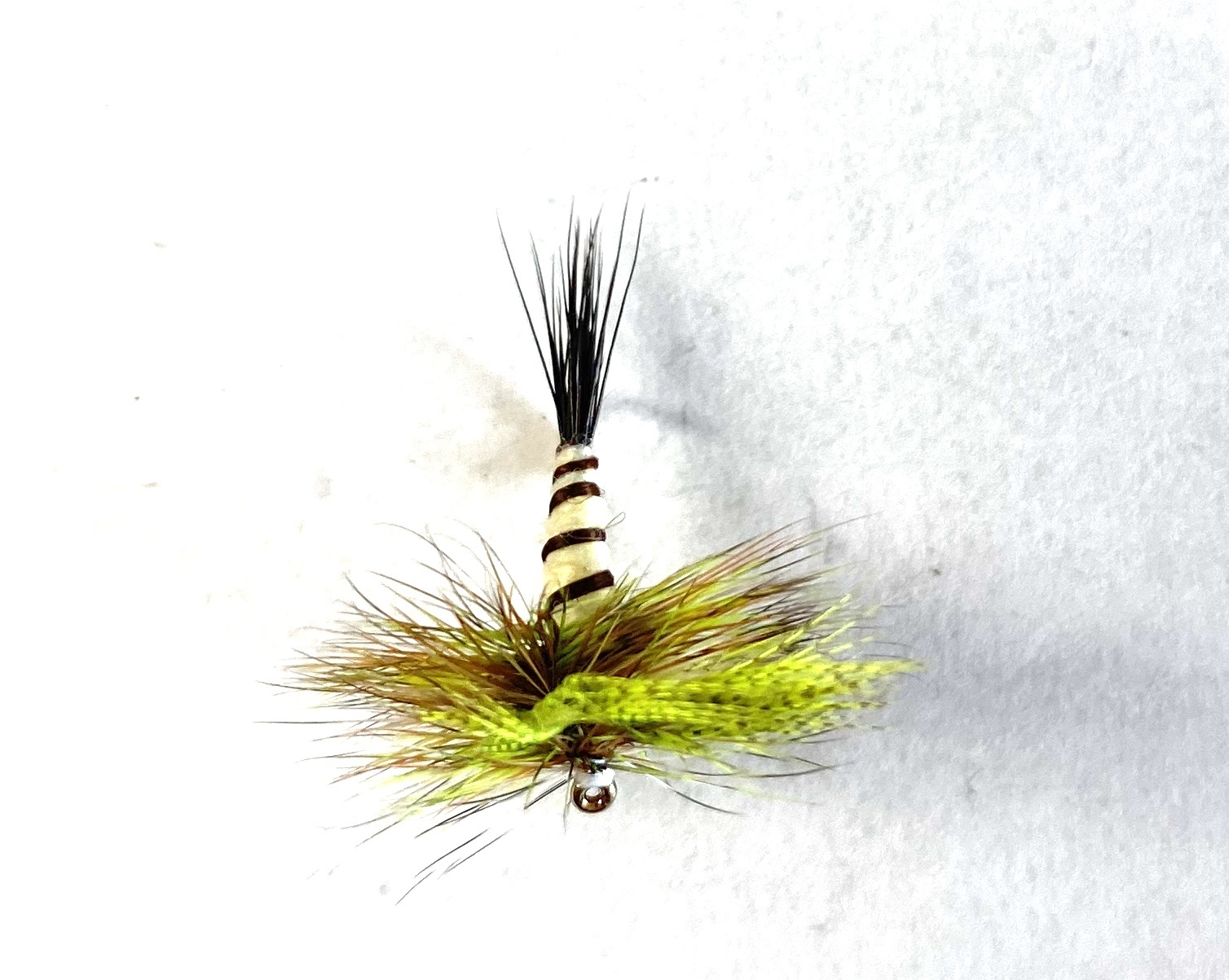 Eastern Green Drake