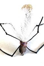 True Salmon Fly Winged