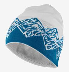 Salomon Graphic Beanie Salomon