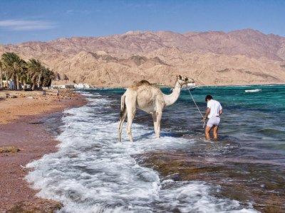 Saphir Heaven Liveaboard, Egypt 2020