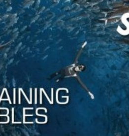 SSI Training Tables