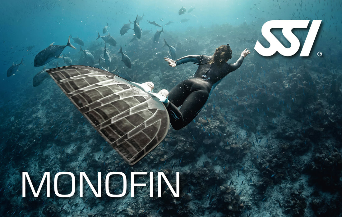 SSI Monofin Pool Specialty