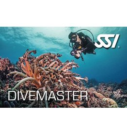 Divemaster Course 2019 Tuition