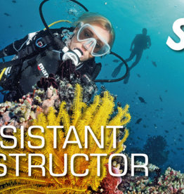 Assistant Instructor Course 2019 Tuition