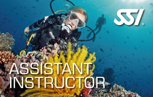 SSI Assistant Instructor Course 2021 (Academics, Pool, Materials)