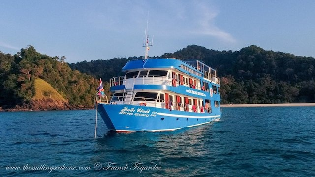 Thailand January 2022 Expedition
