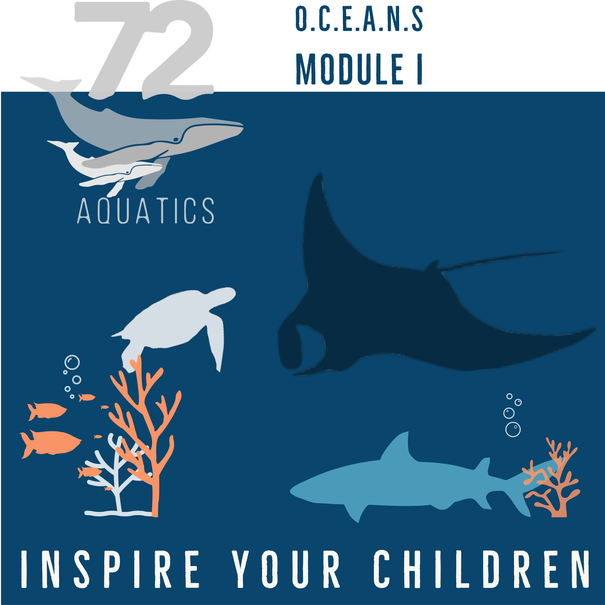 72 Aquatics O.C.E.A.N.S Module I - Awareness
