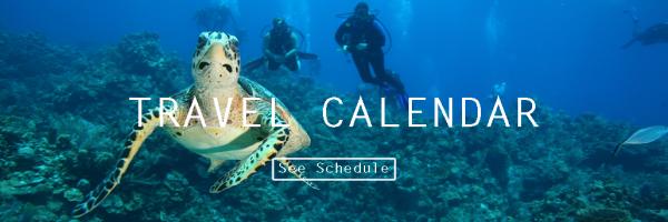 72 Aquatics | Swim, Snorkel, Scuba, Travel - 72 Aquatics