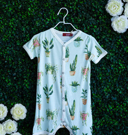 Potted Plants Shortall