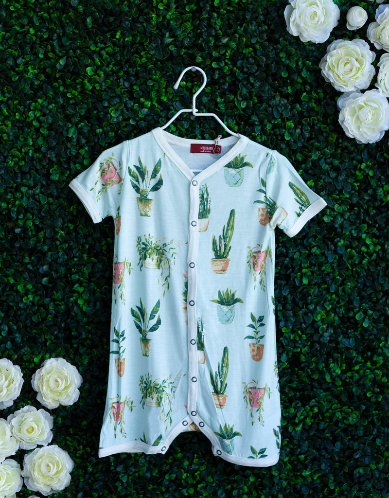 Milkbarn Potted Plants Shortall