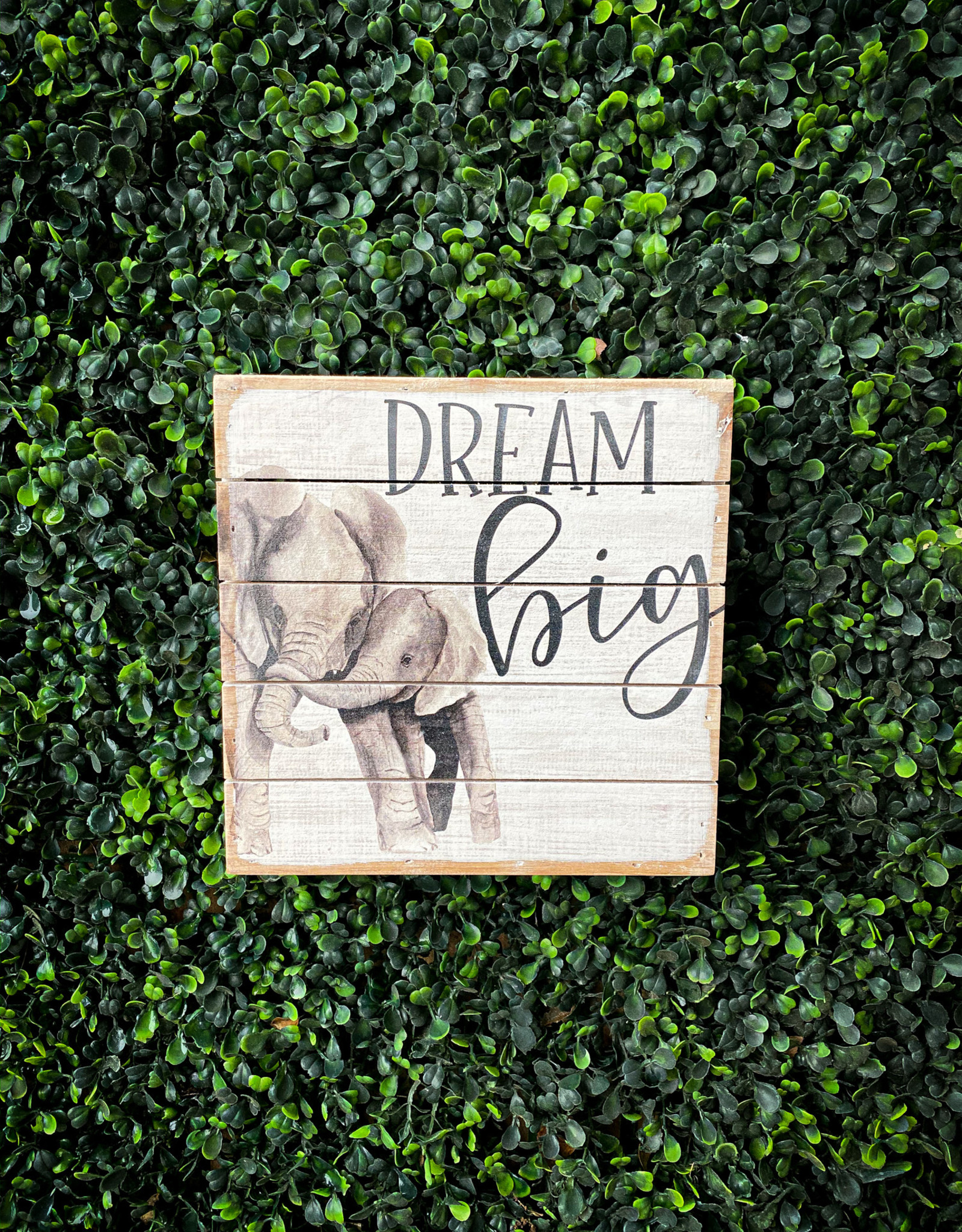 Dream Big Sign 8x8