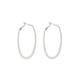 Splendid Iris Oblong Shiny Silver Hoop Earrings