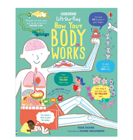 EDC Publishing Lift-the-Flap Q&A: How the Body Works