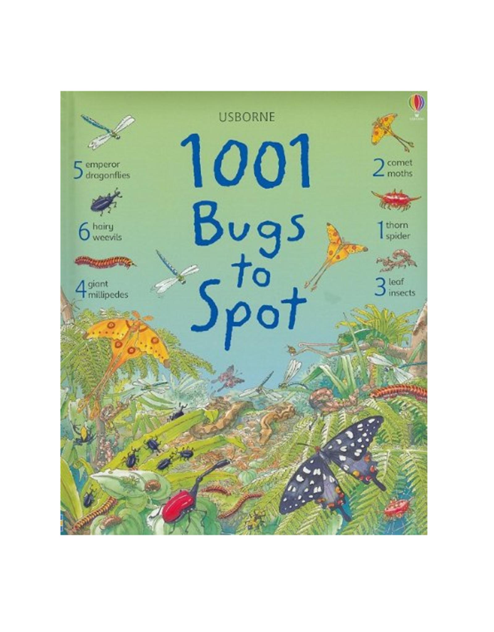 EDC Publishing 1001 Things to Spot Bugs