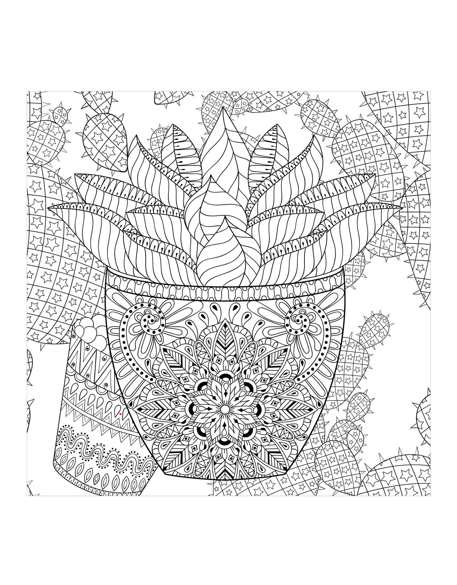 Peter Pauper Press Adult Coloring Book - Succulents