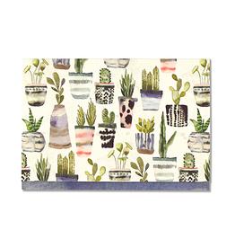 Peter Pauper Press Boxed Note Cards - Watercolor Succulents