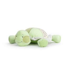 Grow Slow Turtle Plush