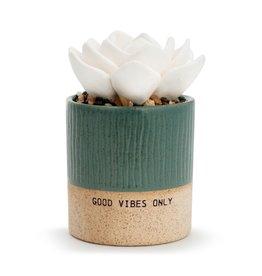 Succulent Oil Diffuser - Good Vibes