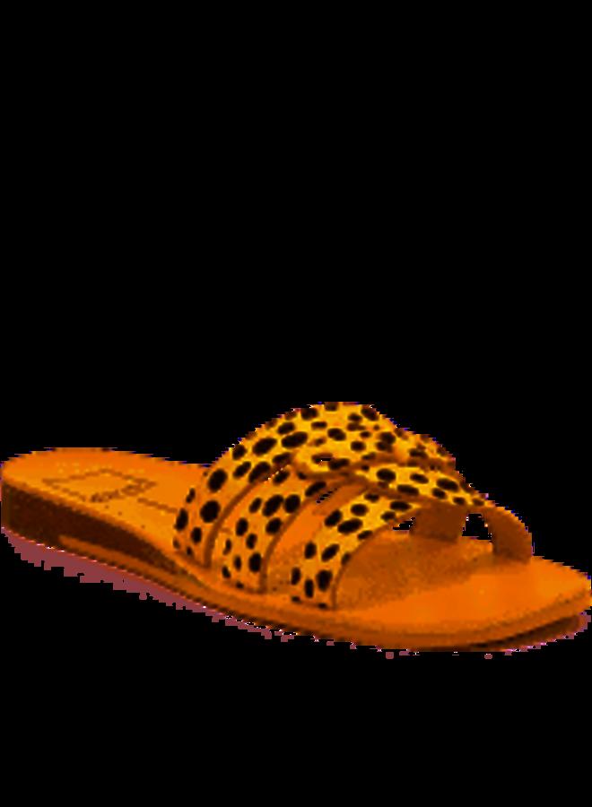 Cait Slide