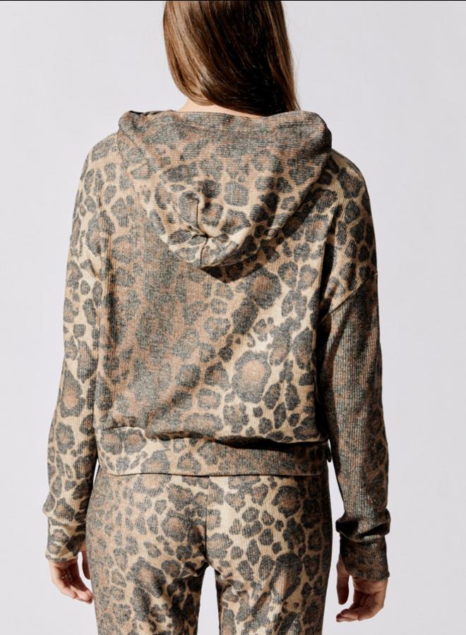Brushed Rib Hoodie Leopard