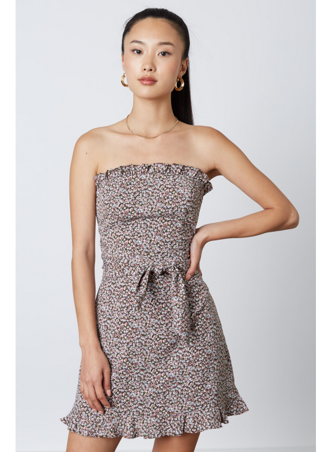 Ripley Strapless Dress Brown Multi
