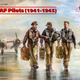 Plastic Kits ICM (e) 1:32 Scale -  USAAF Pilots (1941-45) (3)
