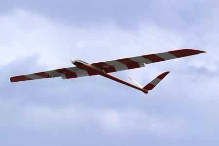 Aircraft Glider Elect TY Paprika Glider F/Glass Foam