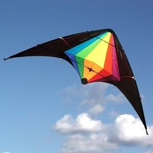 General Windspeed Black Widow Sports Kite