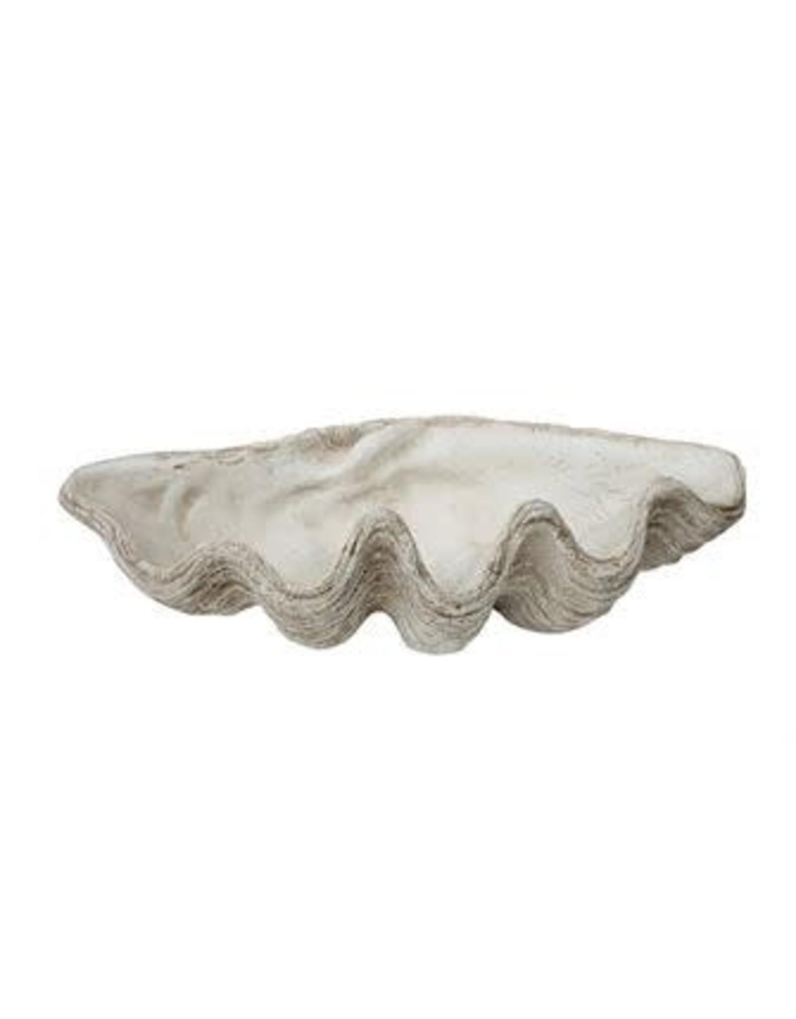 Magnesia Seashell