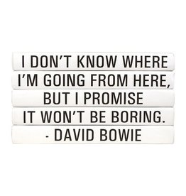 """Website David Bowie """"I Don't Know Where..."""""""