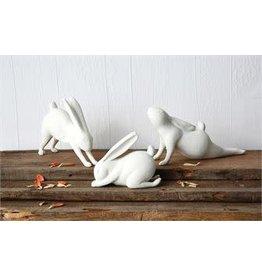 Forward Bend Yoga Rabbit
