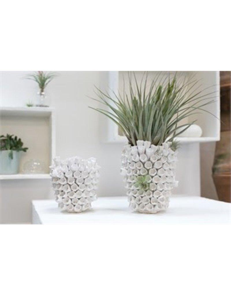 Anemone Vase - small