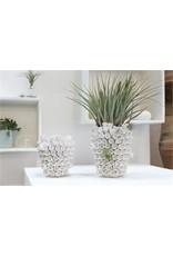 Anemone Vase - large