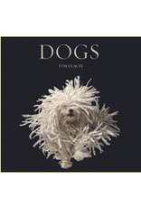 Website Dogs by Flach