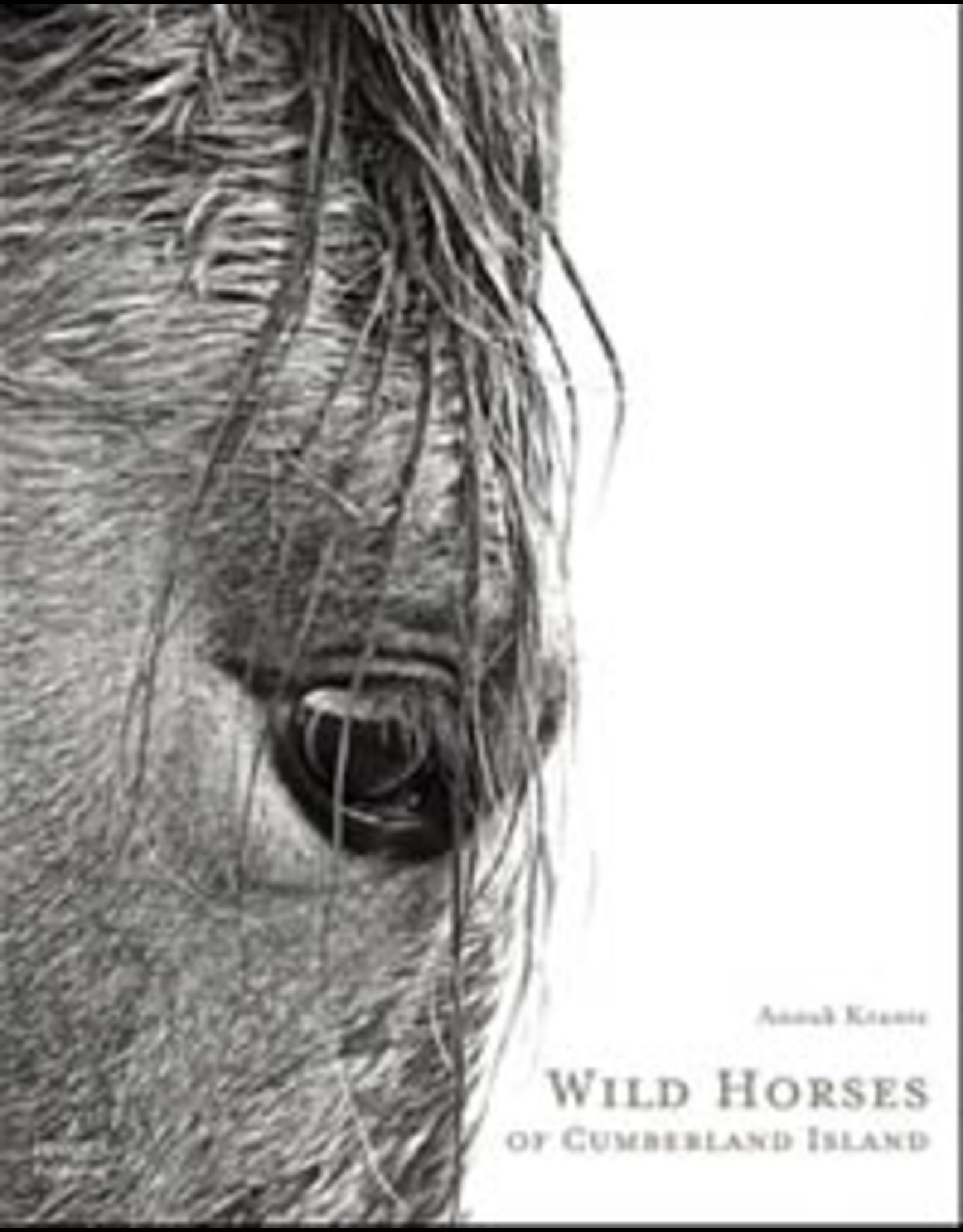 Website Wild Horses of Cumberland Island