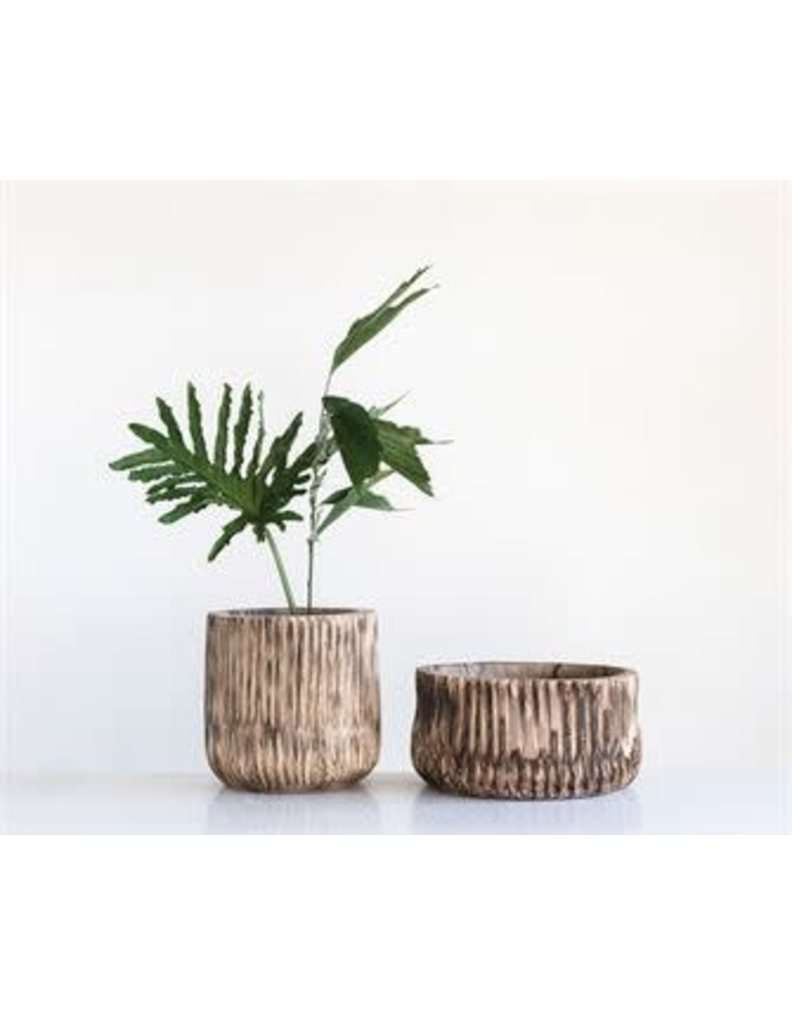 Carved Paulownia Wood Pot
