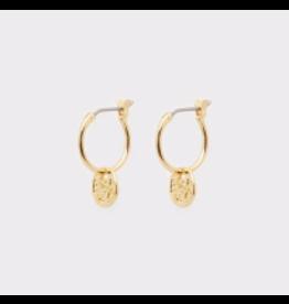 Website Ana Coin Huggies - gold